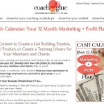 Your 12 Month Marketing & Profit Plan – You can Sell it Too!