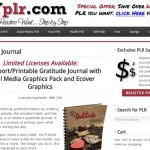 PLR Gratitude Journal – This is How You can Be Happier (and help others too!)