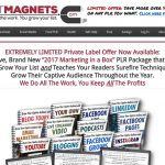 Looking for Lead Magnets? (12 Reports with PLR)